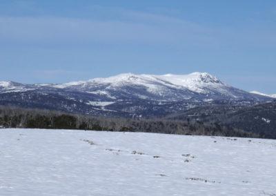 Mt Jagungal, North view